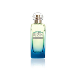 HERMES JARDIN APRES LA MOUSSON DONNA EDT 100 ML SPRAY TESTER